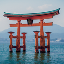 Jolt of Japan